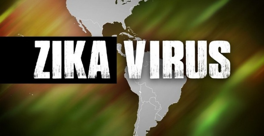 Pregnancy, Diagnosis and Prevention of Zika Virus
